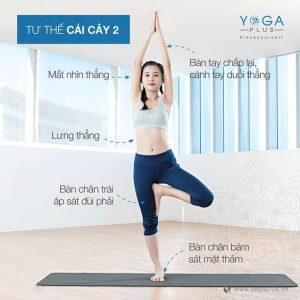 tư thế yoga cây xanh